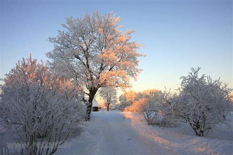 Ziemas rīts ar uzlecošu sauli - Ainava - redzet.lv ...
