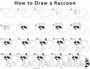 How To Draw A Raccoon Step By Step Pictures Cool2bkids