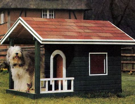 doghouse diy ideas shed windows