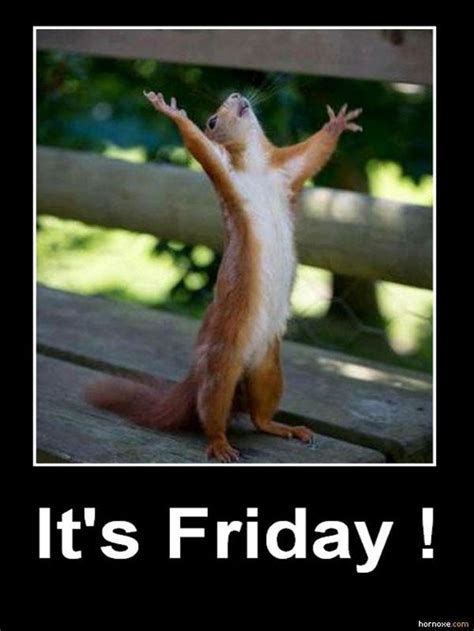 Its Friday Meme Funny - yay it s friday inspirational quotes pinterest funny pics demotivational posters and my