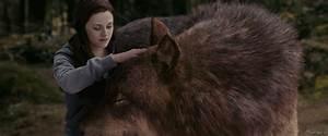 Bella and the Wolf by ToriaChernenko on DeviantArt