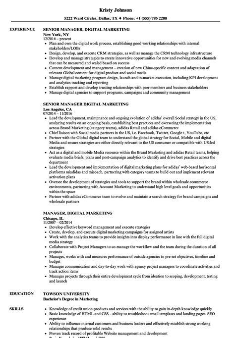 manager digital marketing resume sles velvet