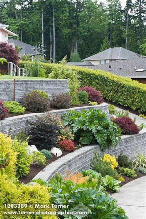 terraced yard landscape ideas amazing exles of terraced front yard gardens landscaping hardscaping pinterest front