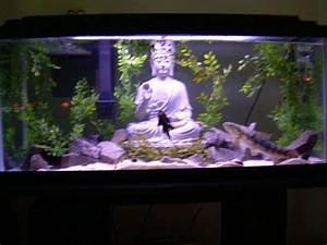 Deco Aquarium Zen : zen aquarium google search house ideas aquarium ~ Melissatoandfro.com Idées de Décoration