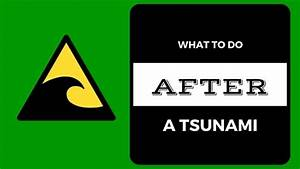 What To Do After A Tsunami  U2013 Recovery