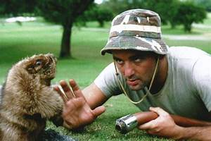 POLL: You haven't seen 'Caddyshack?!?' - SBNation.com