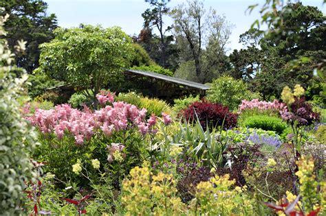 perennial flower garden perennial garden collections mcbg inc 2018 fort
