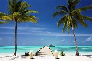 Bilder Von Palmen : unsere top 20 traumstr nde escapio blog leben reisen hotels ~ Frokenaadalensverden.com Haus und Dekorationen
