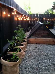 Garden, Fence, Lighting, Ideas, That, Will, Make, Your, Garden, Shine