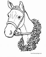 Coloring Pages Horse Horses sketch template