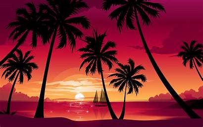 Sunset Wallpapers Desktop Beach Palm Tree Trees