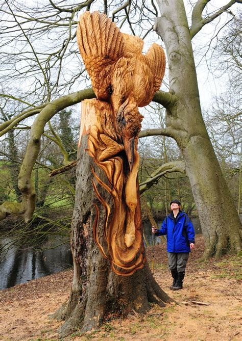 banksy style sculptor leaves stunning carvings  north yorkshire wood mirror