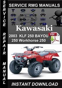2003 Kawasaki Klf 250 Bayou 250 Workhorse 250 Service