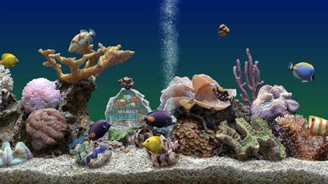 Best Lock Screen Wallpaper The Best Virtual Aquariums For Your Pc