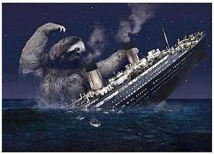 Sloth attacks Titanic | Sloths | Know Your Meme