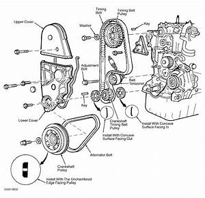 1985 Honda Civic Serpentine Belt Routing And Timing Belt Diagrams