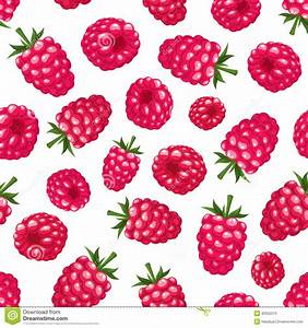 Seamless Background With Raspberry. Vector Illustration ...