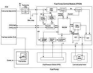 Hyundai Sonata  Fuel Pump Control Module  Fpcm  Schematic