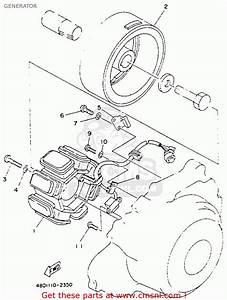 Yamaha Yfb250e Timberwolf 1993 Generator
