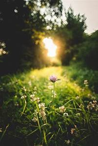 Schöne Momente Bilder : moment 39 s nature pinterest sonnenaufgang landschaft und naturbilder ~ Orissabook.com Haus und Dekorationen