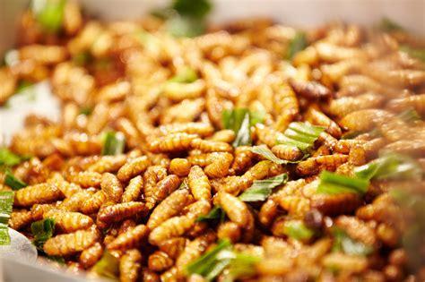 insectes cuisine listes de insectes comestibles insectes comestibles
