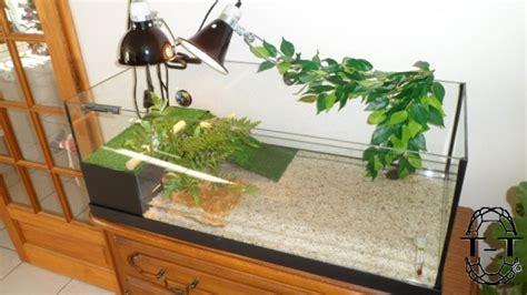 aquarium pour tortue terrestre 2 232 me regroupement des photos de vos aquariums