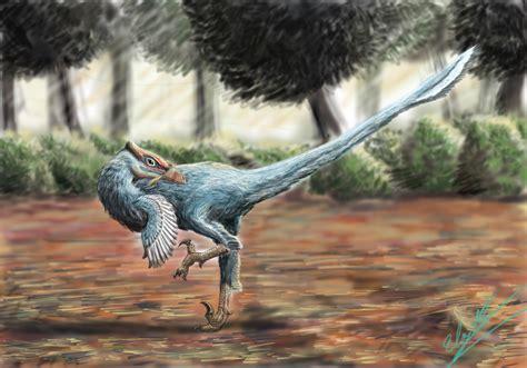 pamparaptor wikipedia