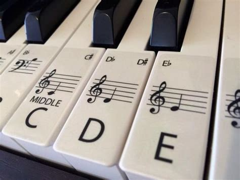 Standard Clear Keyboard / Piano Stickers Up To 61 Keys The