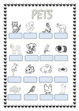 english esl pets kindergarten worksheets