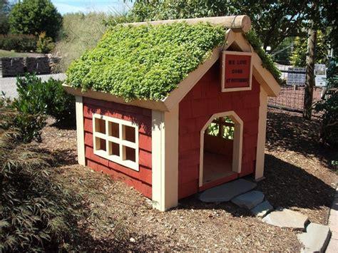 elegant unique dog house plans  home plans design