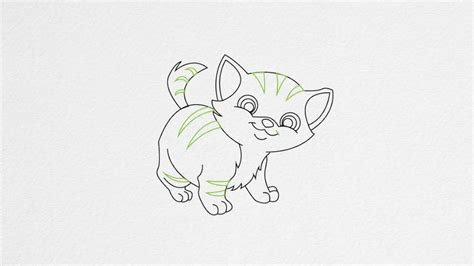 draw  kitten step  step youtube