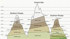 File Altitudinal Zones Of Alps Mountains Extended Diagram