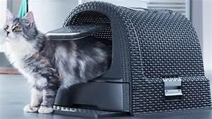Litiere Chat Fermée : litiere chat fermee tout sur le chat ~ Melissatoandfro.com Idées de Décoration
