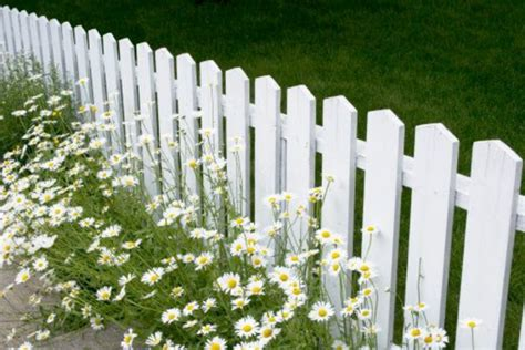 Lattenzaun Weiß Holz by Sch 246 Ne Ideen F 252 R Einen Gartenzaun Aus Holz In Wei 223
