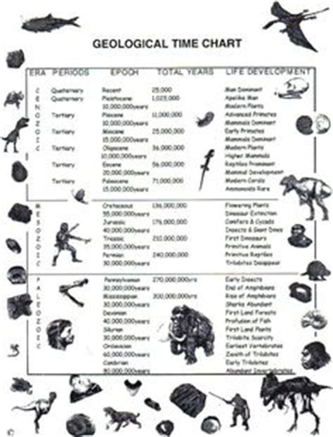 index fossils activity geologic time scale with index