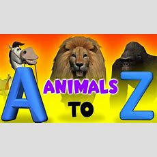 A To Z Animals For Kids  Animals With Alphabets  3d Alphabet Songs Youtube