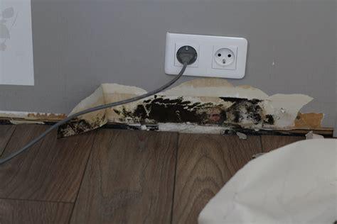 moisissure tapisserie chambre humidité et donc moisissure dans une chambre communauté