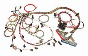 Painless Wiring 60508 Fuel Injection Wiring Harness For