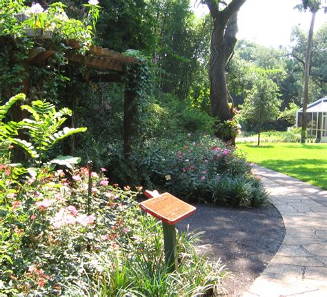 sunken gardens st petersburg sunken gardens places to see in florida