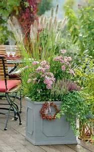 Hopfen Im Kübel Pflanzen : ideen f r eine herbstlich gestaltete terrasse pinterest purpur farbenspiel und japanische ~ Markanthonyermac.com Haus und Dekorationen