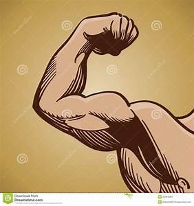 Arms Flexing Clipart (61+)