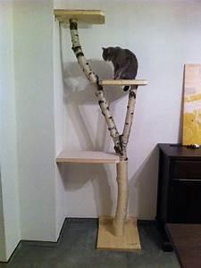 Katzenkratzbaum Selber Machen : so einfach zu bauen und stilvoll noch dazu die katze freut sich allemal natur katzen ~ Yasmunasinghe.com Haus und Dekorationen
