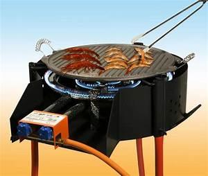 Barbecue Gaz Et Charbon : barbecues garcima barbecue rond charbon de bois ou gaz ~ Dailycaller-alerts.com Idées de Décoration