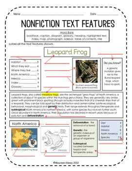 nonfiction text features assessment by kinney kreations tpt