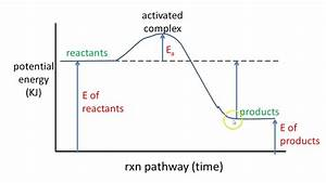 5 Potential Energy Diagram Exothermic Rxn