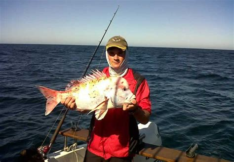 Boat Cruise In Port Alfred by Fishing Cruise