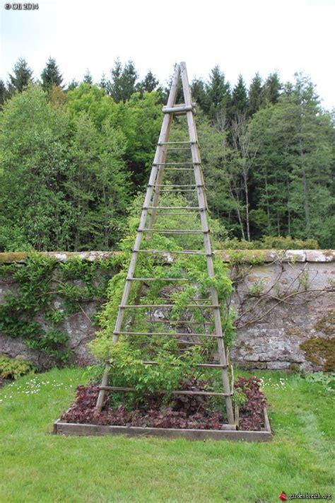 support rosier grimpant support pour rosier grimpant jardin de l abbaye d autrey les galeries photo de plantes de