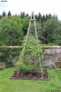 Support Pour Rosier Grimpant : support pour rosier grimpant jardin de l 39 abbaye d 39 autrey ~ Premium-room.com Idées de Décoration