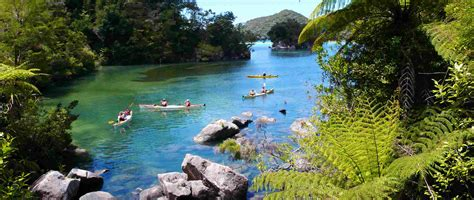Paddle Boats River Torrens Prices by Lodge Based Guided Walk Or Sea Kayak Abel Tasman National