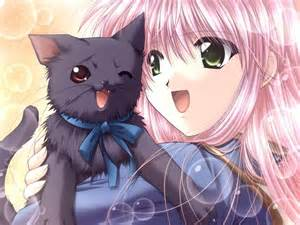 anime cat anime cat anime paradise picture